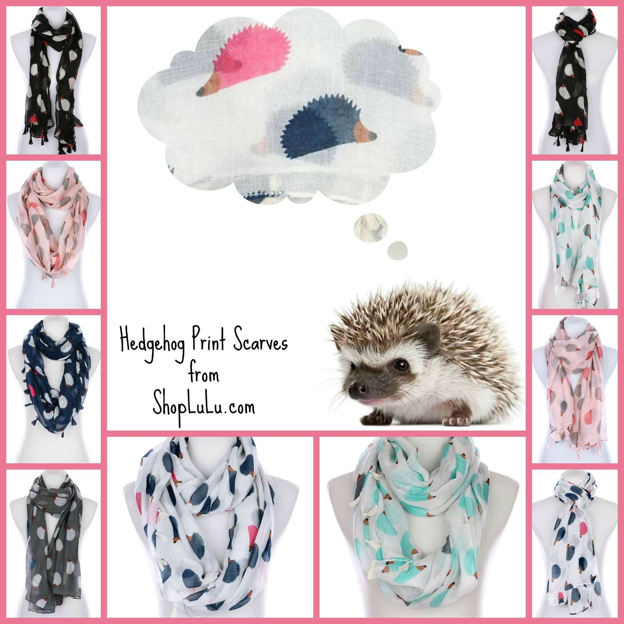 We Are WILD About Hedgehogs At Shop LuLu ! This Cute Little Guy Is Totally  Adorable