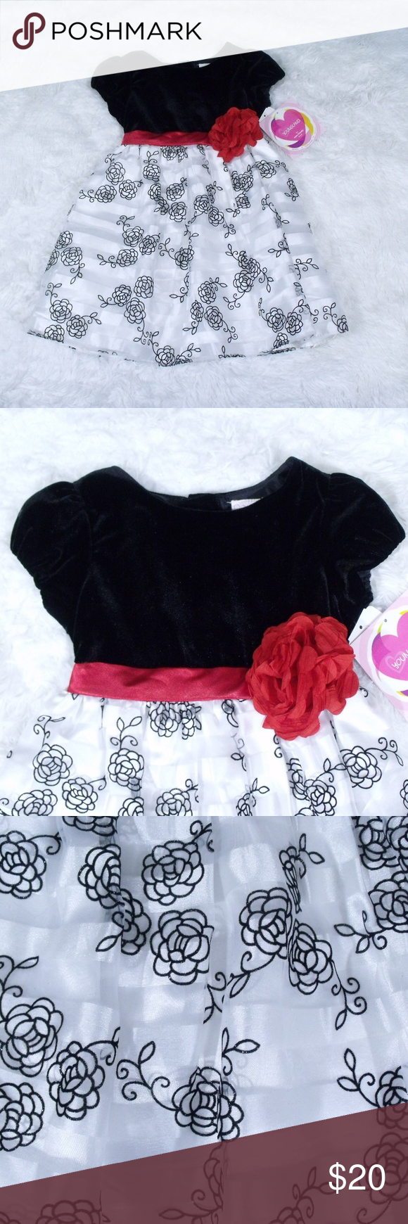 Youngland Roses Holiday Party Dress 5t Youngland Dress Size 5t Black With White Skirt That Has Bla Holiday Party Dresses Clothes Design Colorful Dresses [ 1740 x 580 Pixel ]