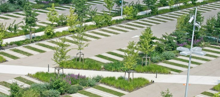 Landscaping Walkways And Open Space In Commercial Parking
