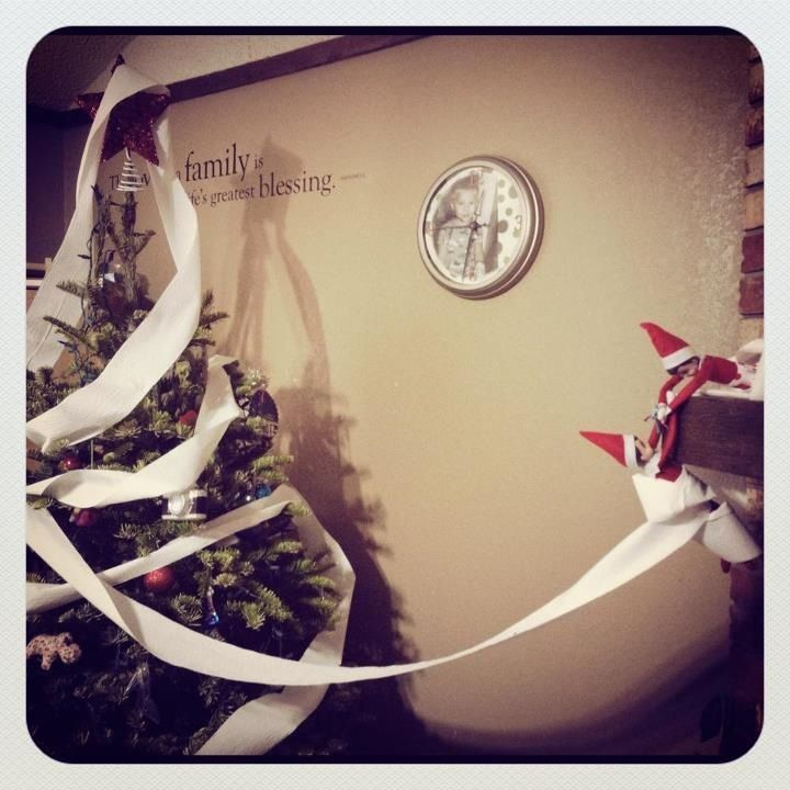 Adelle & Clyde toilet papered our Christmas Tree! Busy little elves!