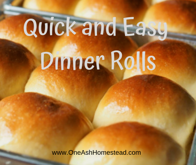 Quick and Easy Dinner Rolls images