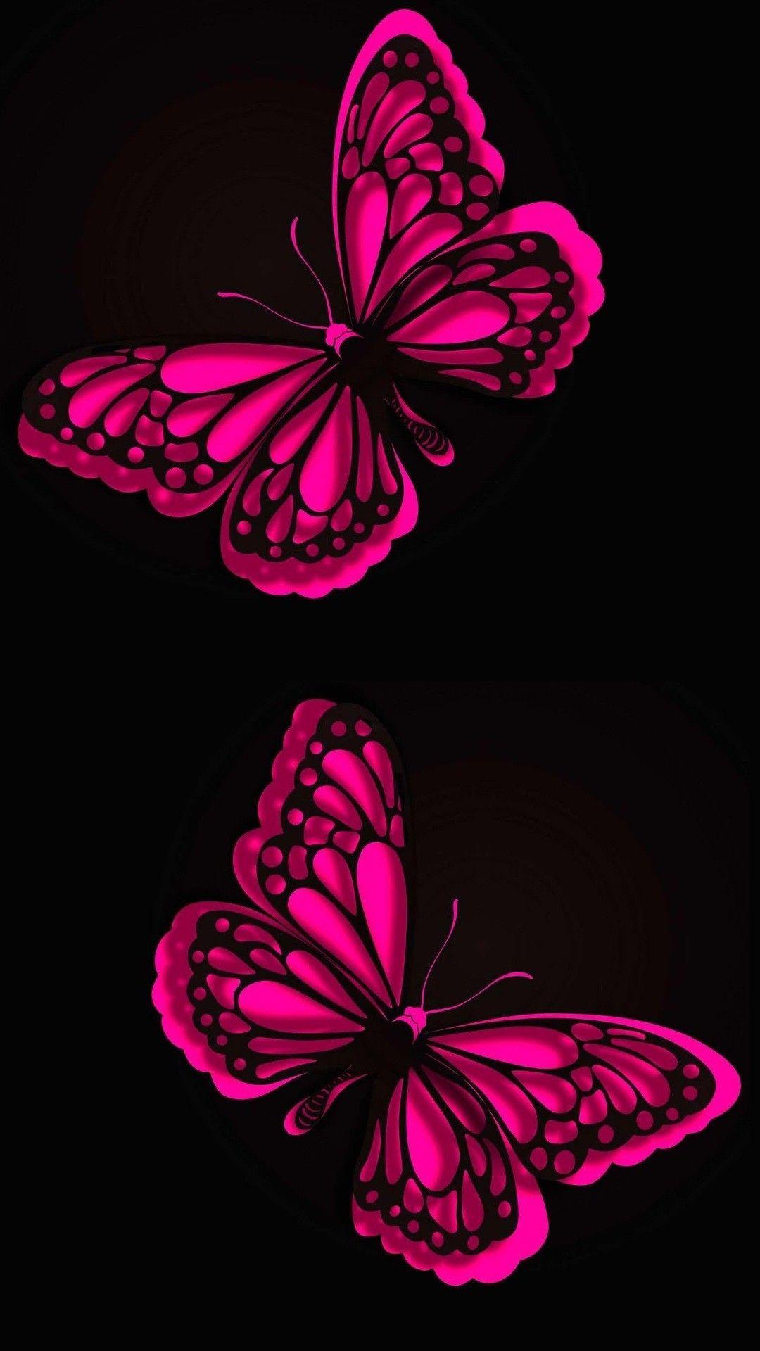 Free Butterflies Wallpaper Backgrounds