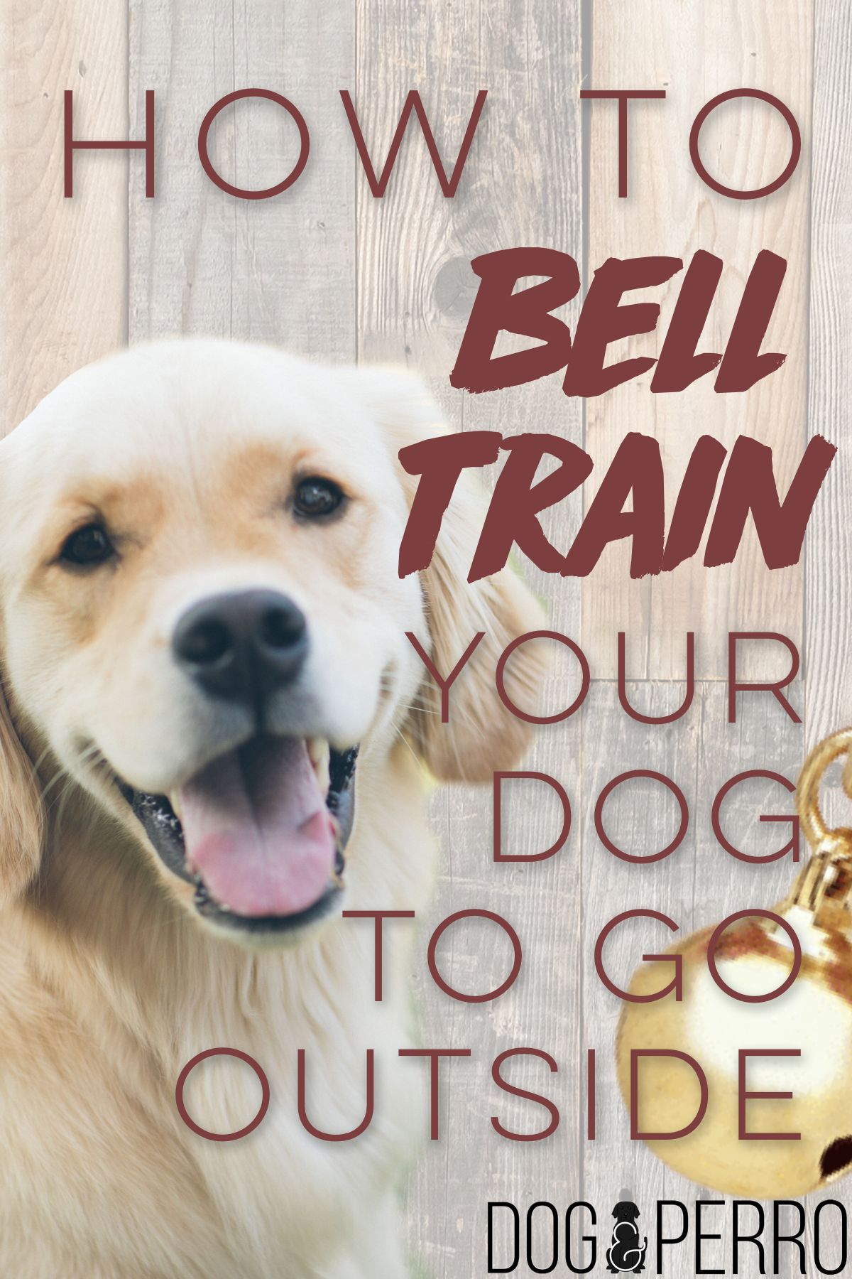 How To Bell Train Your Dog To Go Outside Dog Clicker Training Puppy Training Dog Training