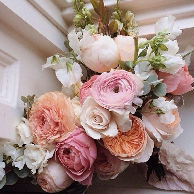 Pin by Leslie Gile on Flora   Pinterest   Flora, Flowers and Bridal ...