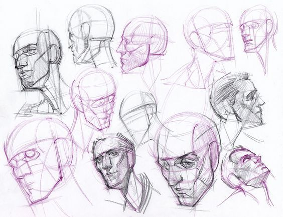 Drawing Heads & Faces on Pinterest  Drawing Heads