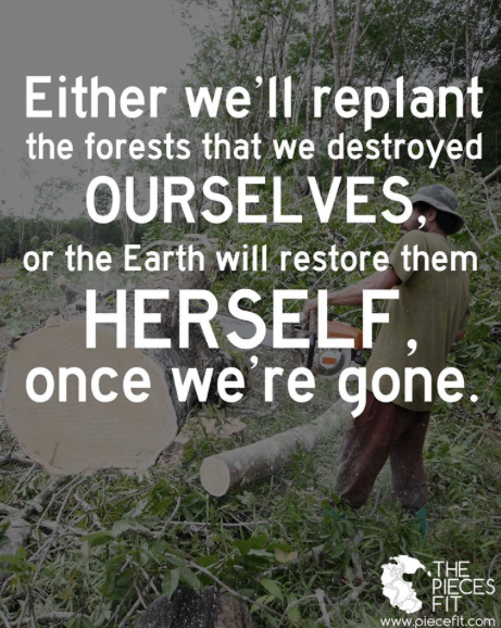 Our choice. Read more: http://www.thelostlemurian.com/who-is-gaia/ 