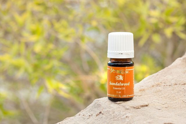Sandalwood essential oil is used for a variety of purposes such as promoting healthy, beautiful skin and encouraging deeper meditation. Another Ancient Oil good for skin growths, age spots, moles etc. It is non-toxic and Safe! It may also increase men's libido!