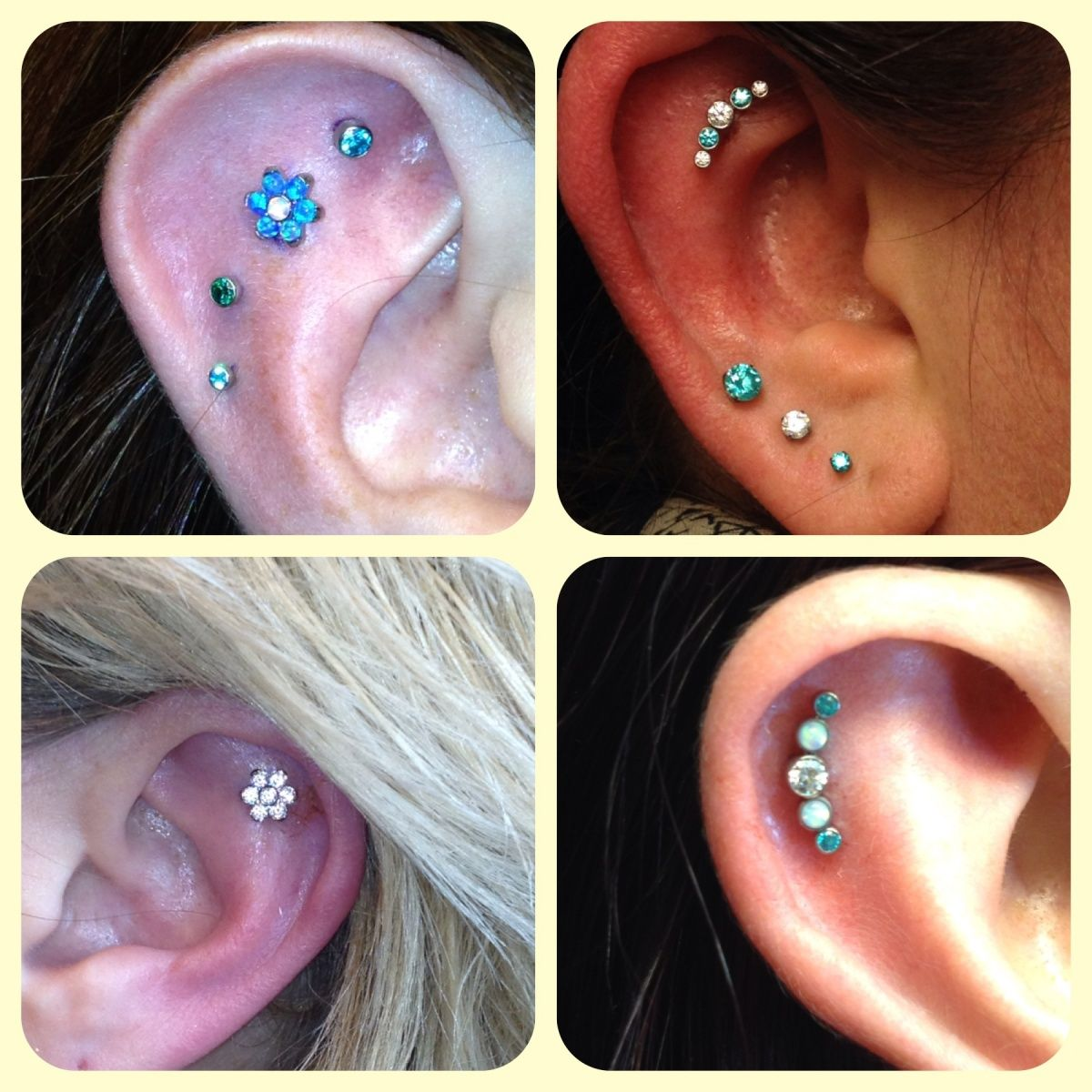 Helix Cartilage Piercings With Anatometal Cluster Earrings  And Neometal Jewelry