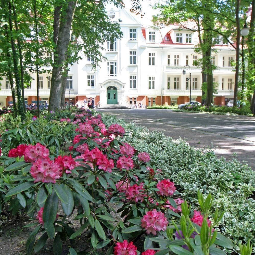 Cesarskie Ogrody Kaiser S Garten Aus Der Ganzen Welt Von Hotel Cesarskie Ogrody In Swinemunde Hotel Cesarskie Ogrody Fur Cesarskie Ogrody Kaiser 03 Plants