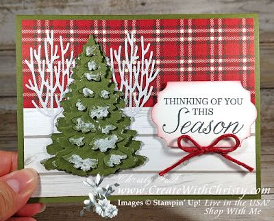 Create With Christy Christmas Theme Week - Winter Woods Plaid Card