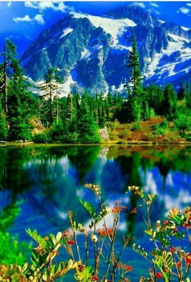 Pin By Wipl52 On Nature S Beauty With Images Beautiful Photography Nature Cool Pictures Of Nature Beautiful Landscapes