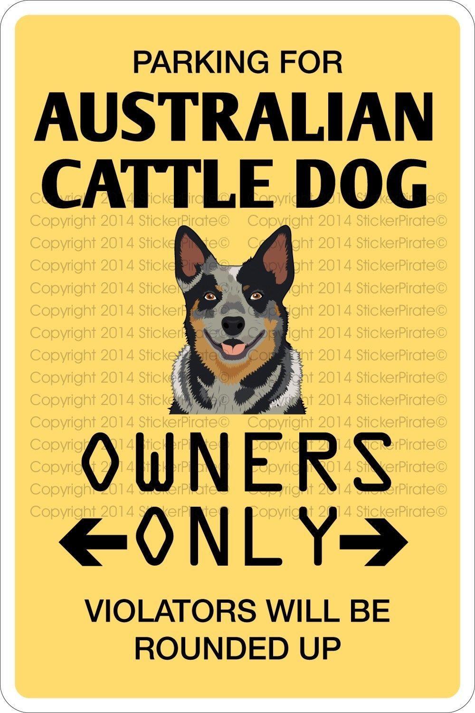 Metal Sign Parking For Australian Cattle Dog 8u00 X 12u00