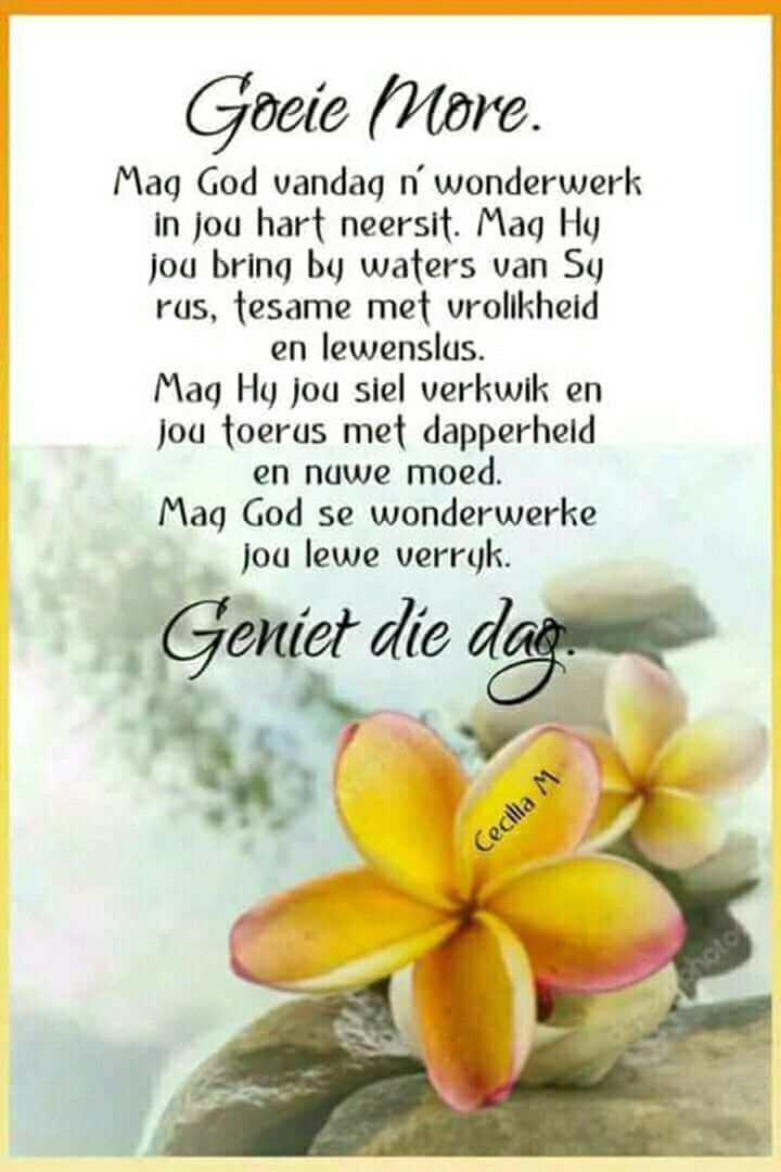 Pin by gertrude on good morning and evening greetings pinterest pin by gertrude on good morning and evening greetings pinterest afrikaans afrikaans quotes and jesus quotes m4hsunfo
