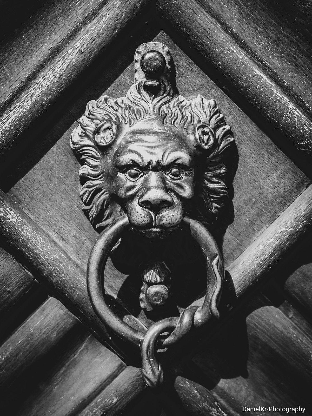 ein alter löwe in bamberg dieser alte löwe und schlange