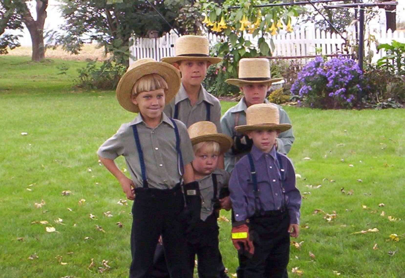 Lancaster County PA Pennsylvania USA Amish farm Stock