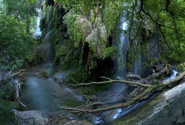 10 Amazing Hikes Near Houston | Hiking, Outdoors and Third
