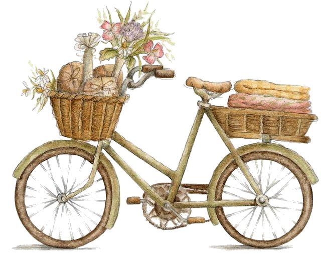Country Living Ciclismo Bicicleta Ilustracao Ilustracao De
