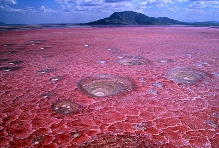 Image result for lake in tanzania