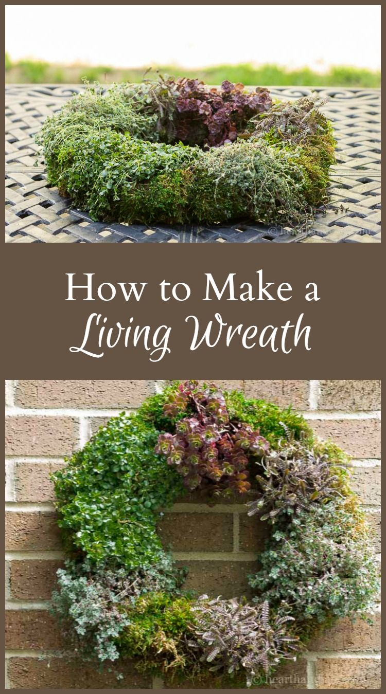 606398672341fdfdd290b63b616d1a29 - How To Make A Living Gardening