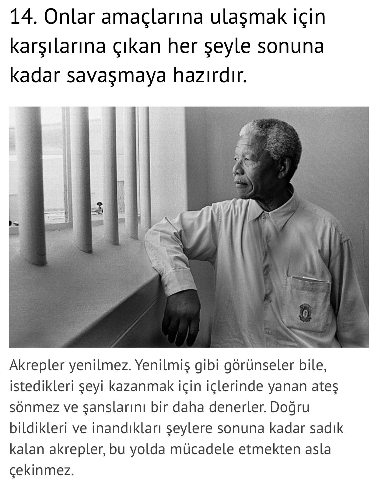Mandela Quotes About Love Pinbiran Akacan On Scorpio  Pinterest  Scorpio