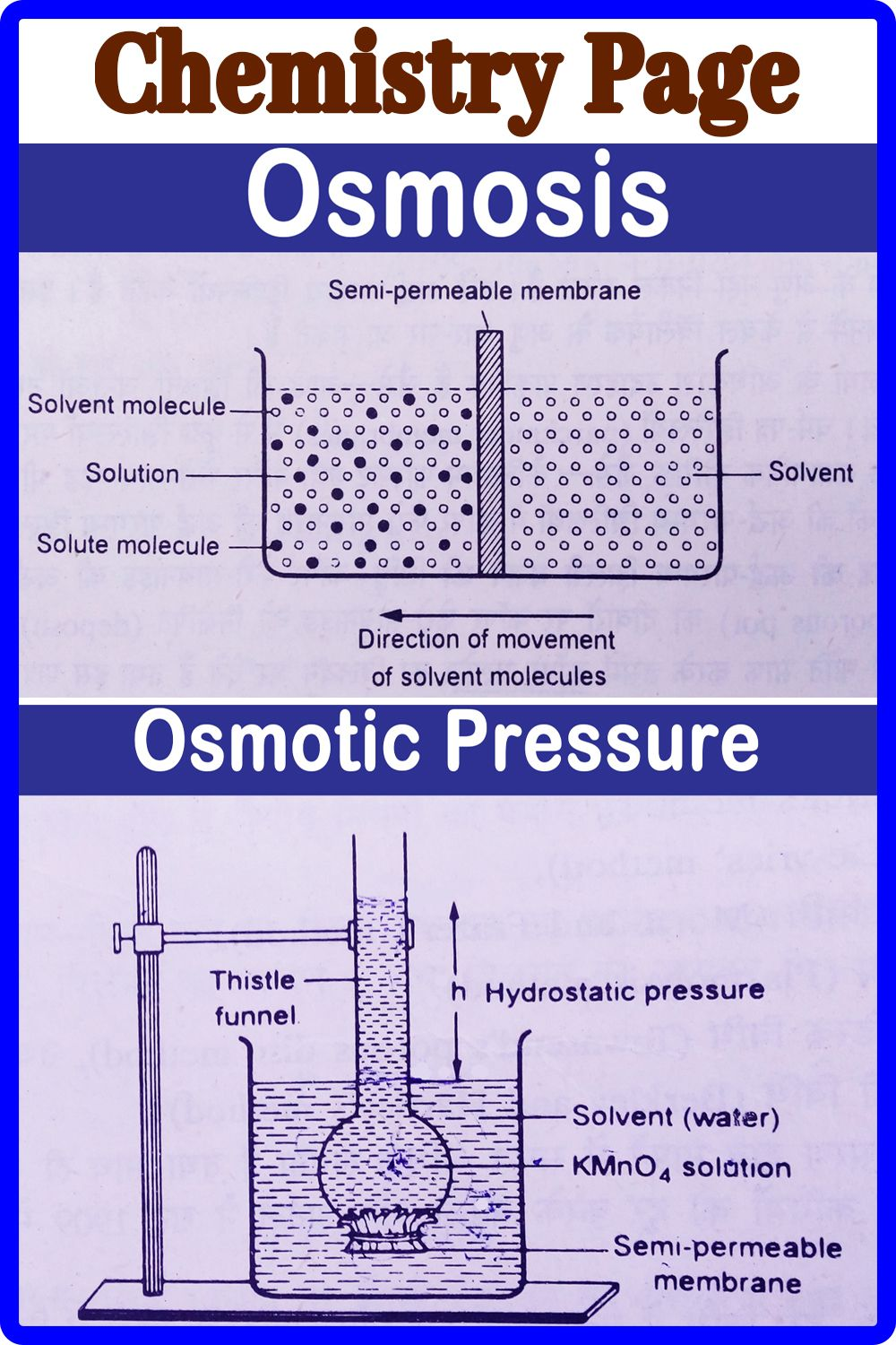 Osmosis and Osmotic Pressure in 2021 | Osmotic pressure, Osmosis, Chemistry  notes