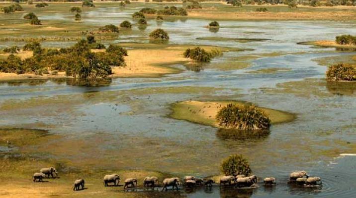 Okavango Deltaet i Botswana set fra luften