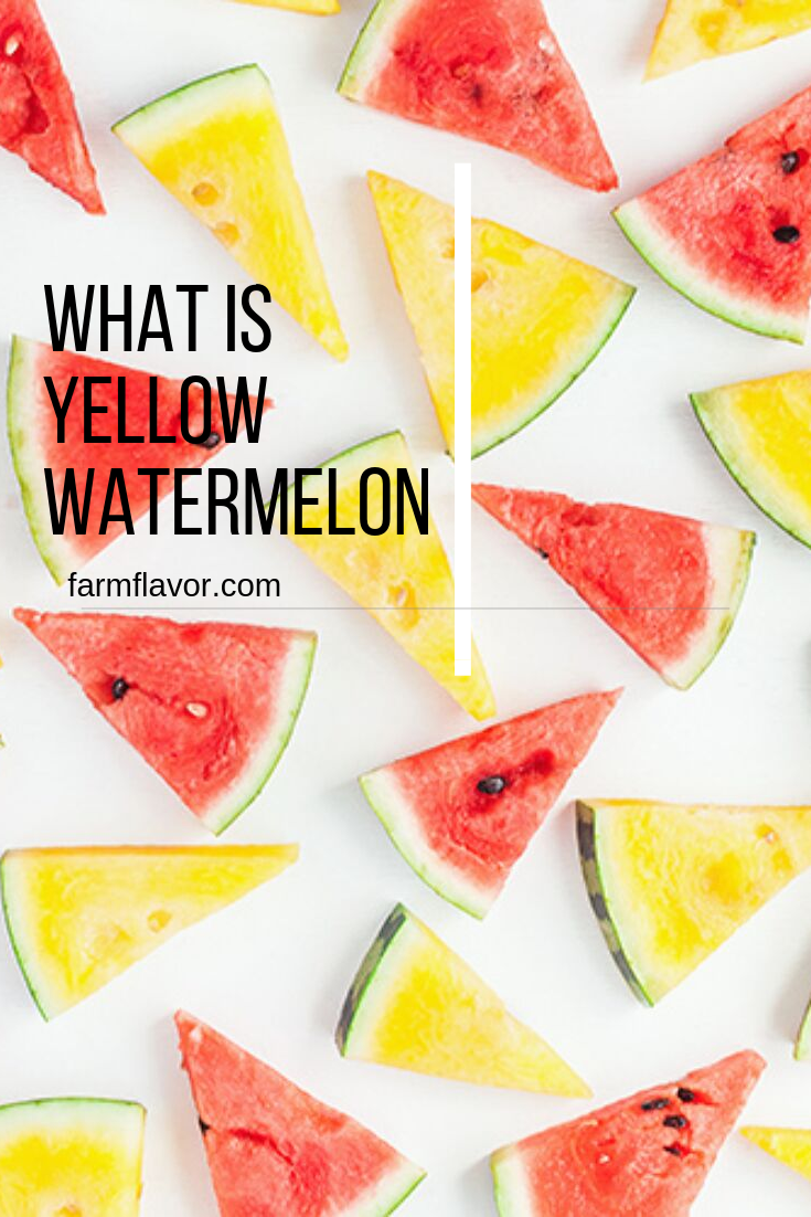 What Is Yellow Watermelon Farm Flavor Watermelon Watermelon Varieties Watermelon Recipes Canning