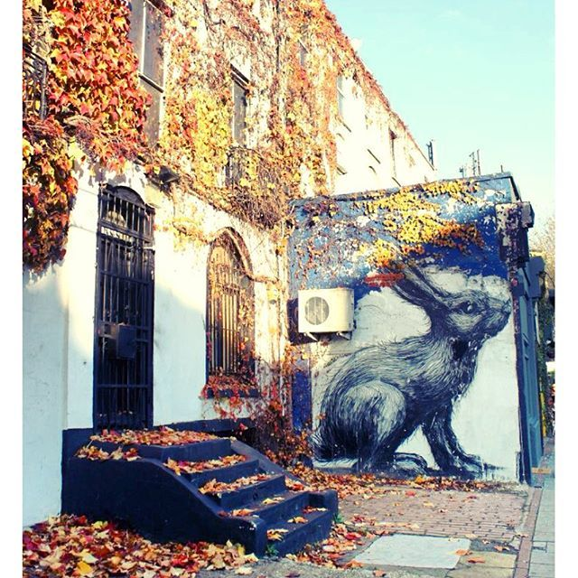 """""""Autumn in Shoreditch  Artist #Roa"""" Photo taken by @susyanese on Instagram, pinned via the InstaPin iOS App! http://www.instapinapp.com (10/19/2015)"""