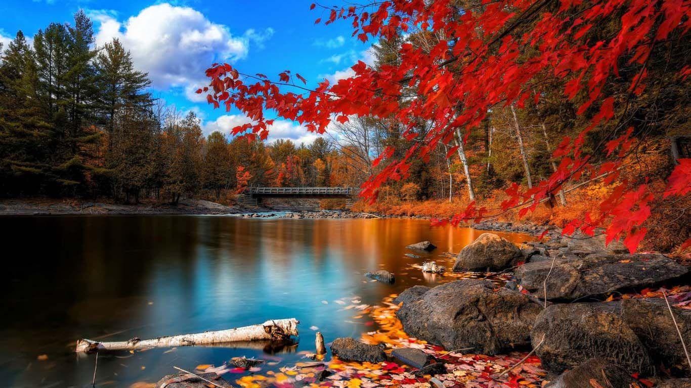 4k Wallpaper Ultra Hd Landscape In Fall Free Desktop Backgrounds Beautiful Nature Scenery Scenery Wallpaper