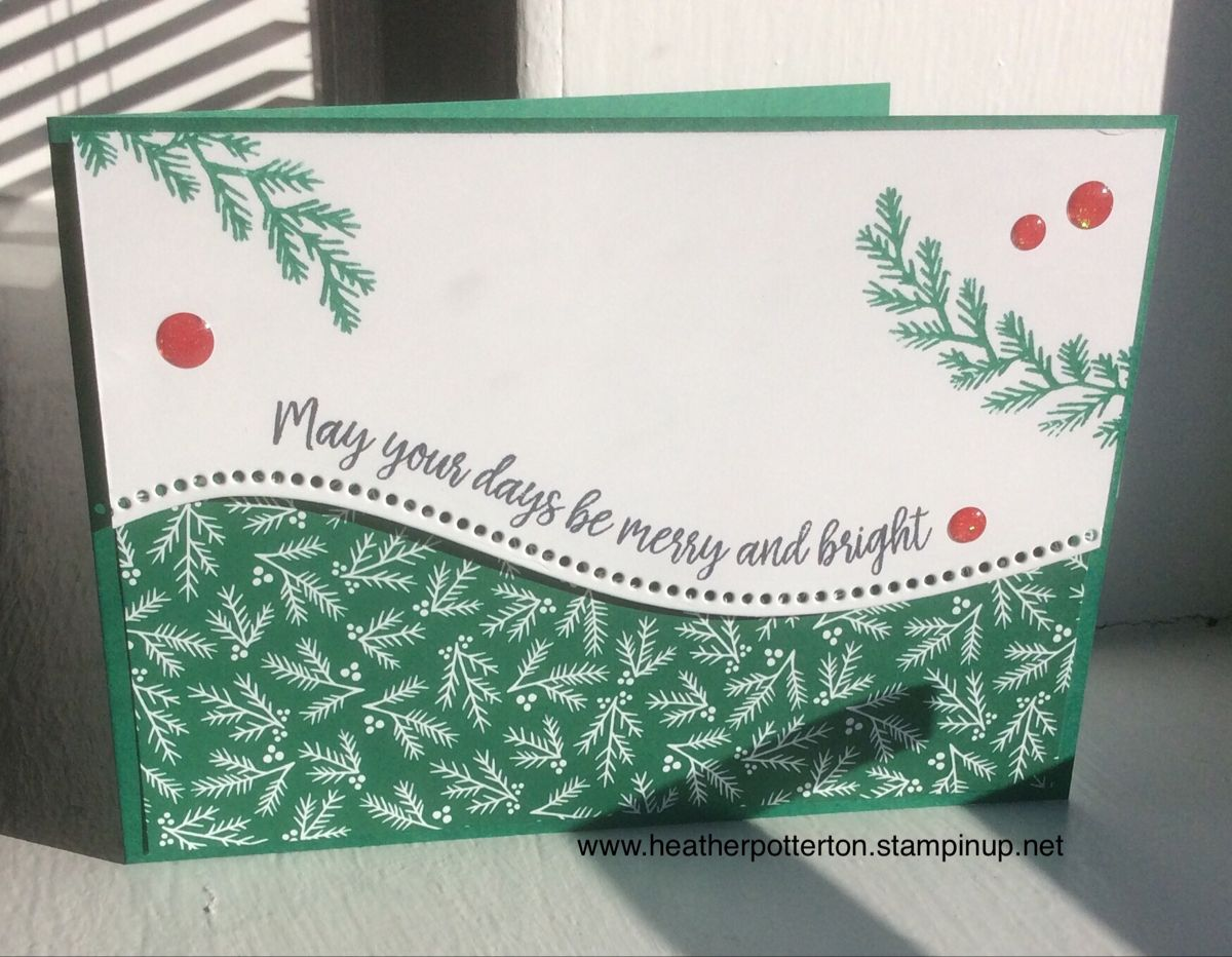 Stampin up Curvy Christmas