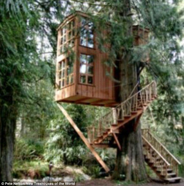 House of imagination: Trillium, another structure at Nelson's Treehouse  Point, perches on a