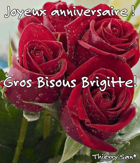 Joyeux anniversaire Brigitte! Gros Bisous! Thierry San* en