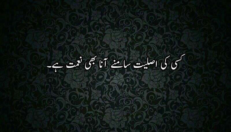 Sach hi h (With images) | Quotes from novels, Fb quote ...