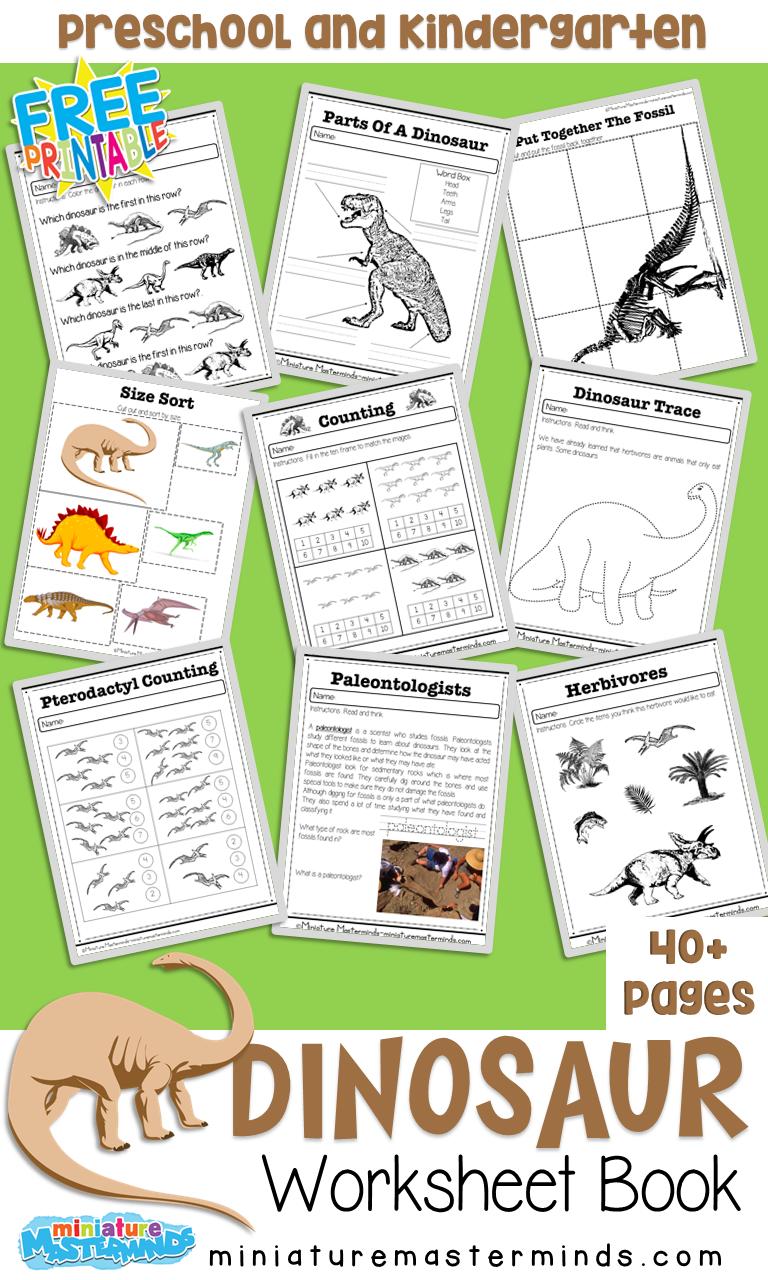 Free Dinosaurs Preschool and Kindergarten Work Book ⋆ Miniature Masterminds