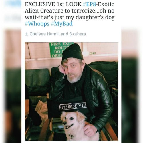 MARK HAMILL Tweets Exotic Creature Picture from STAR WARS:...