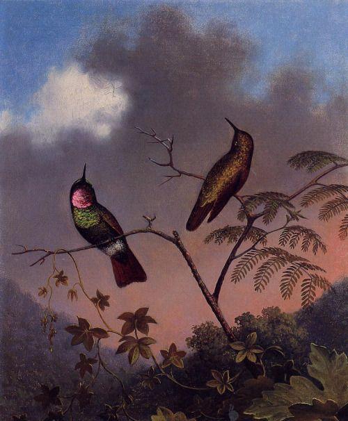dappledwithshadow:  Martin Johnson Heade(American 1819 - 1904)