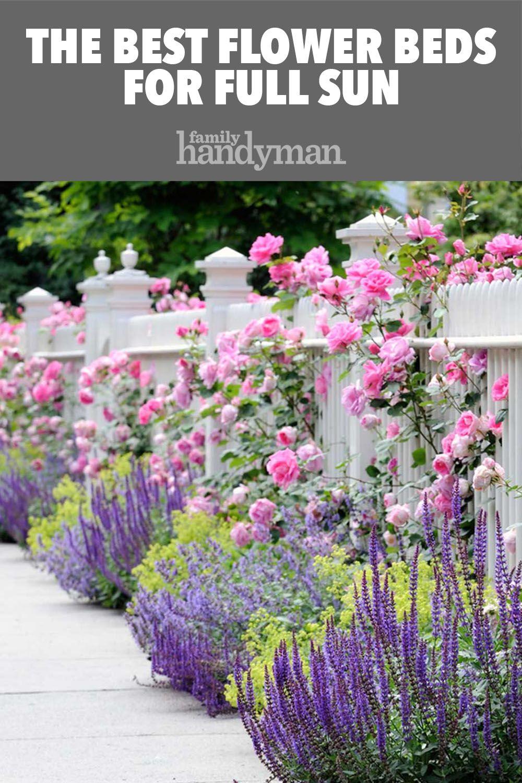 Our Favorite Flower Bed Ideas For Full Sun Small Front Yard Landscaping Front Yard Landscaping Flower Garden Design