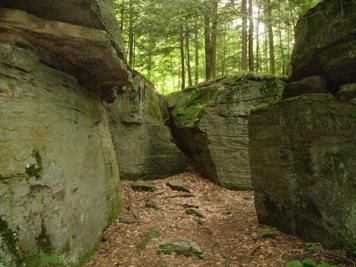 Rock City N Y Little Rock City In Ny State Forest Places I Like Near Buffalo State Forest
