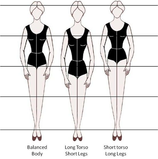 What U0026 39 S My Body Shape  Insights Into Vertical And