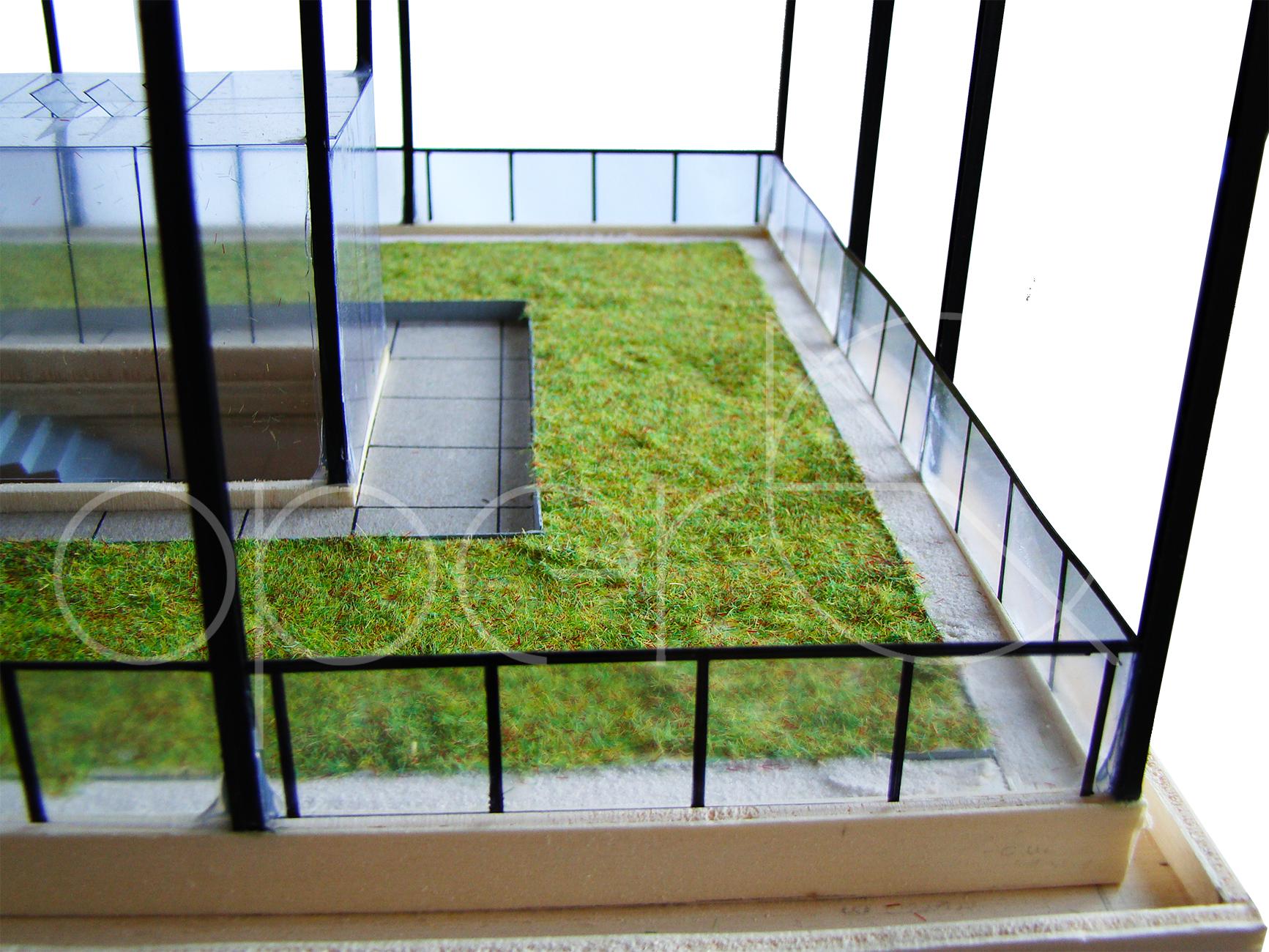 Particolare del tetto verde.