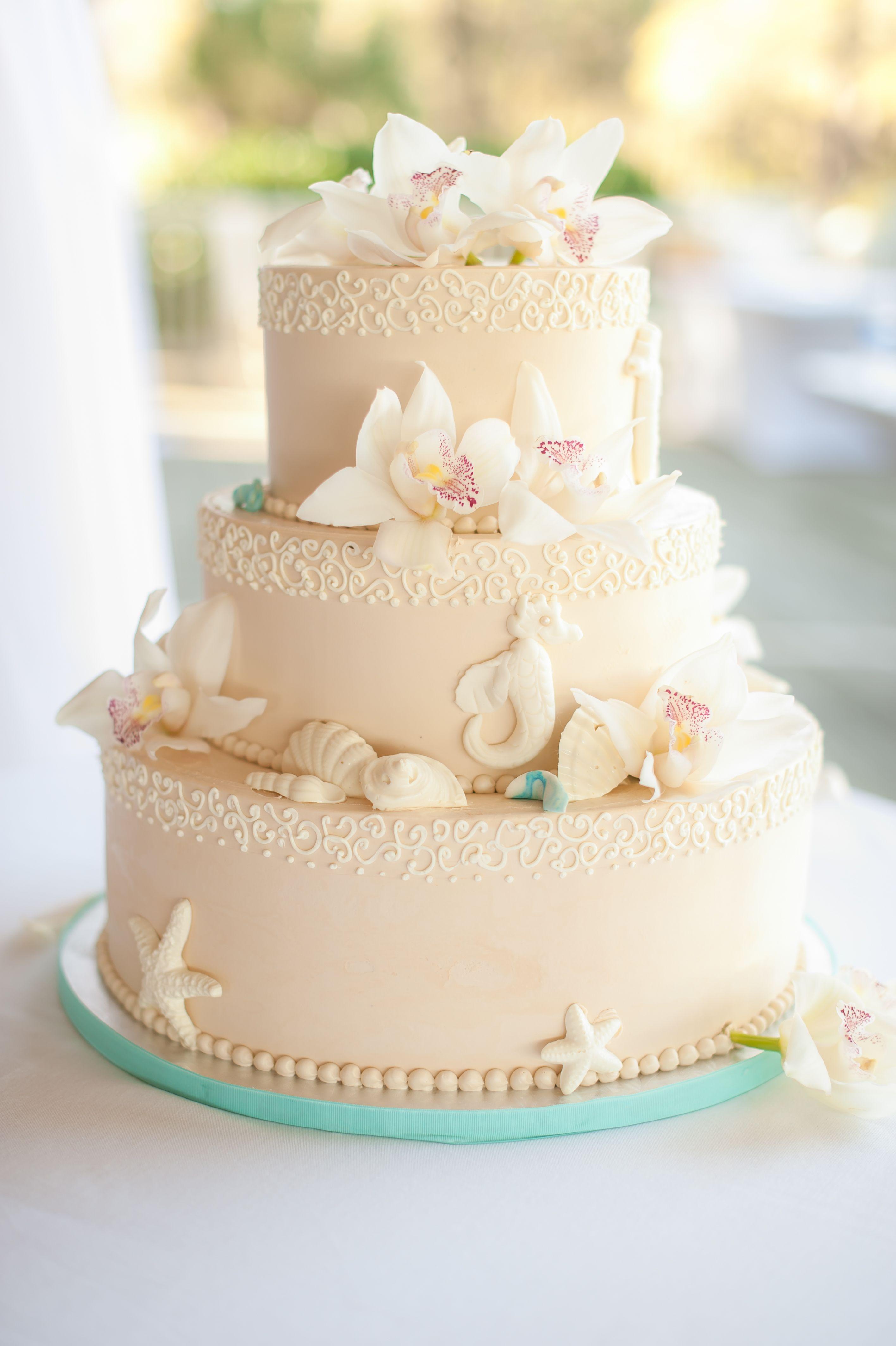 Beach Themed Wedding Cake With Seashells And Seahorses Wedding