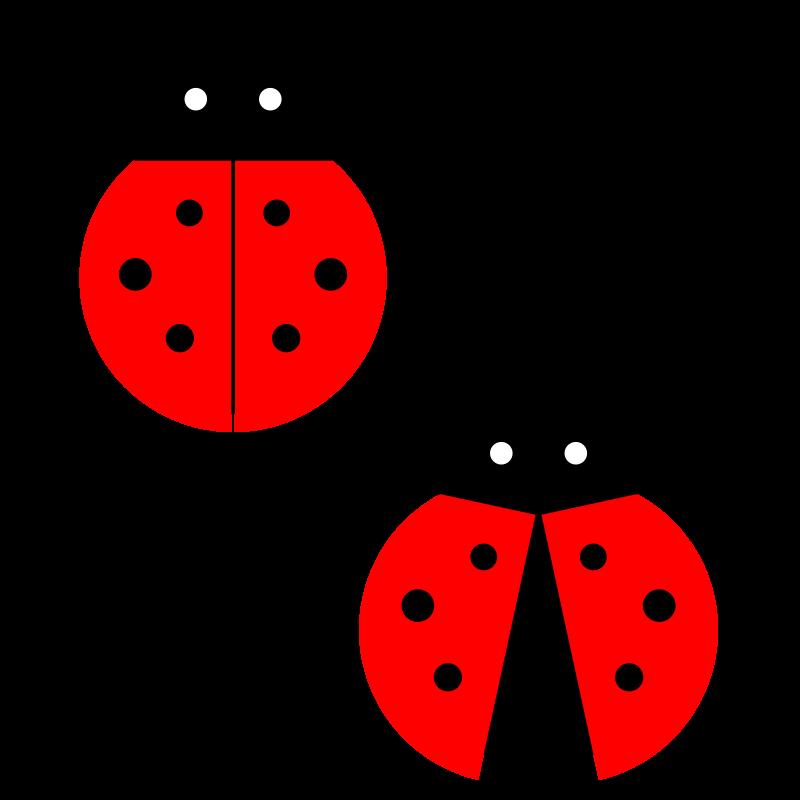 Clipart Ladybug Free Clip Art Ladybird Drawing Ladybug