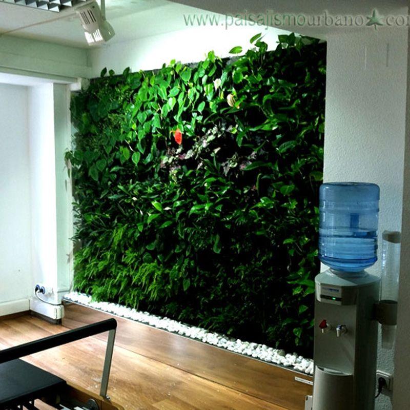Jard n vertical interior en espa a estudio de pilates en - Jardines verticales interiores ...