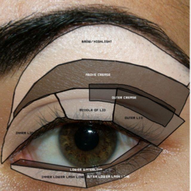 Eyeshadow For Dummies Applying Eyeshadow For Dummiesand Also