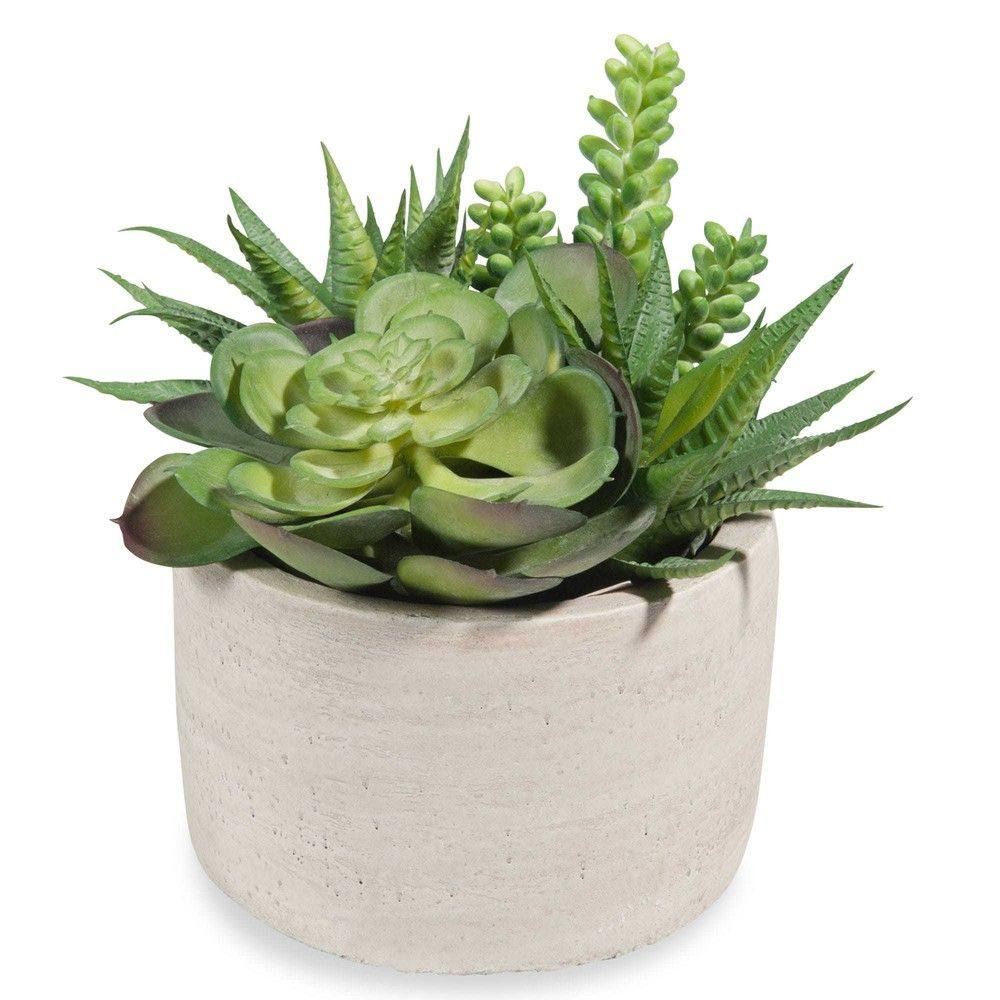 Pot De Succulentes Artificielles Avec Images Plantes