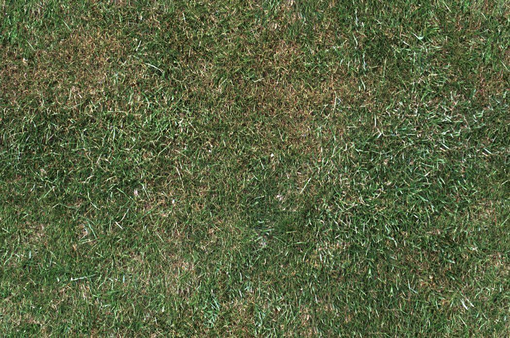 grass texture hd landscape grass texture 3d grass texture hd pinterest