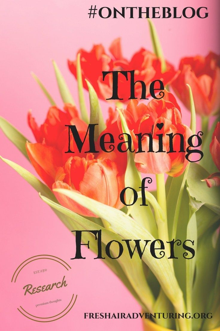 Meaning of Flowers & Their Colors | All My Ladies | Pinterest | Flowers