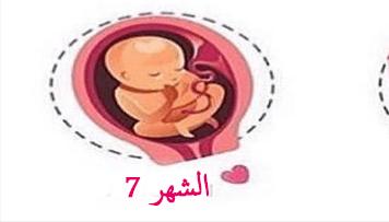 وضعية الجنين في الشهر السابع والتغيرات التي تظهرعلى الأم