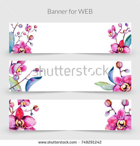 Stock Photo: Wildflower orchid flower frame in a watercolor style ...