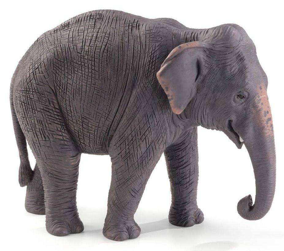 Asian Elephant · Mojo 2017 Asian Elephant Figurine ...
